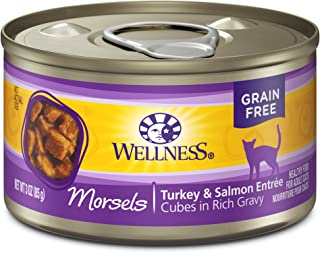 Wellness Natural Grain Free Wet Canned Cat Food Morsels Turkey & Salmon