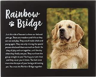 the rainbow bridge for cats