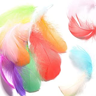 Mixhomic 600Pcs Natural Goose Feathers, Colorful Decor Feathers, Suitable for DIY Crafts Wedding Baby Shower Home Party Decorations, 20 Different Colors