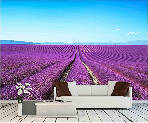 Wall26 Lavender Flower Blooming Scented Fields In Endless Rows Valensole Plateau Provence France Europe Removable Wall Mural Self Adhesive Large Wallpaper 100x144 Inches