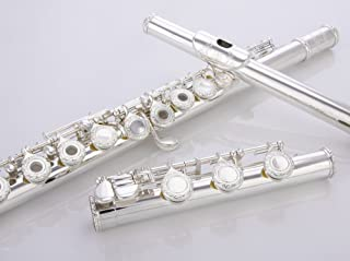 Best gemeinhardt solid silver flute Reviews