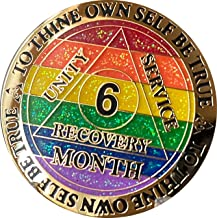 MyRecoveryStore AA or NA Monthly Dog Tag with Sobriety Chip 1-11