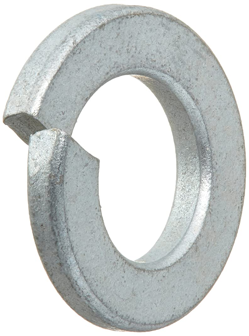 Ridgid 60085 Package of 6 Washers
