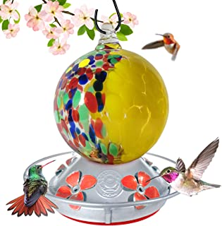 Grateful Gnome - Hummingbird Feeder - Hand Blown Glass - Half Yellow Flowers and Half Wild Flowers Globe - 24 Fluid Ounces