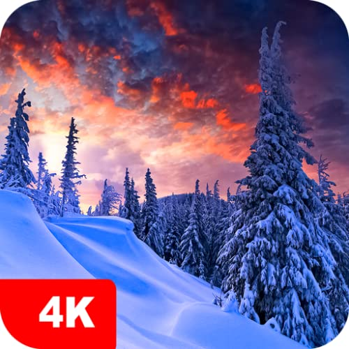 Winter Wallpapers 4K & HD Backgrounds apps
