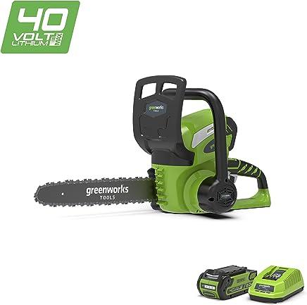 Greenworks Motosierra inalámbrica de 30cm y 40V Li-Ion con batería de 2Ah y cargador - 20117UA