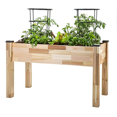 Phenomenal Raised Garden Beds Amazon Com Pabps2019 Chair Design Images Pabps2019Com