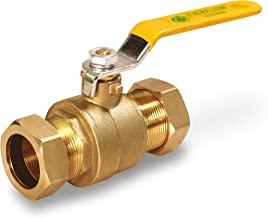 Everflow Supplies 600M001-NL Lead Free Compression Ball Valve, 1-Inch