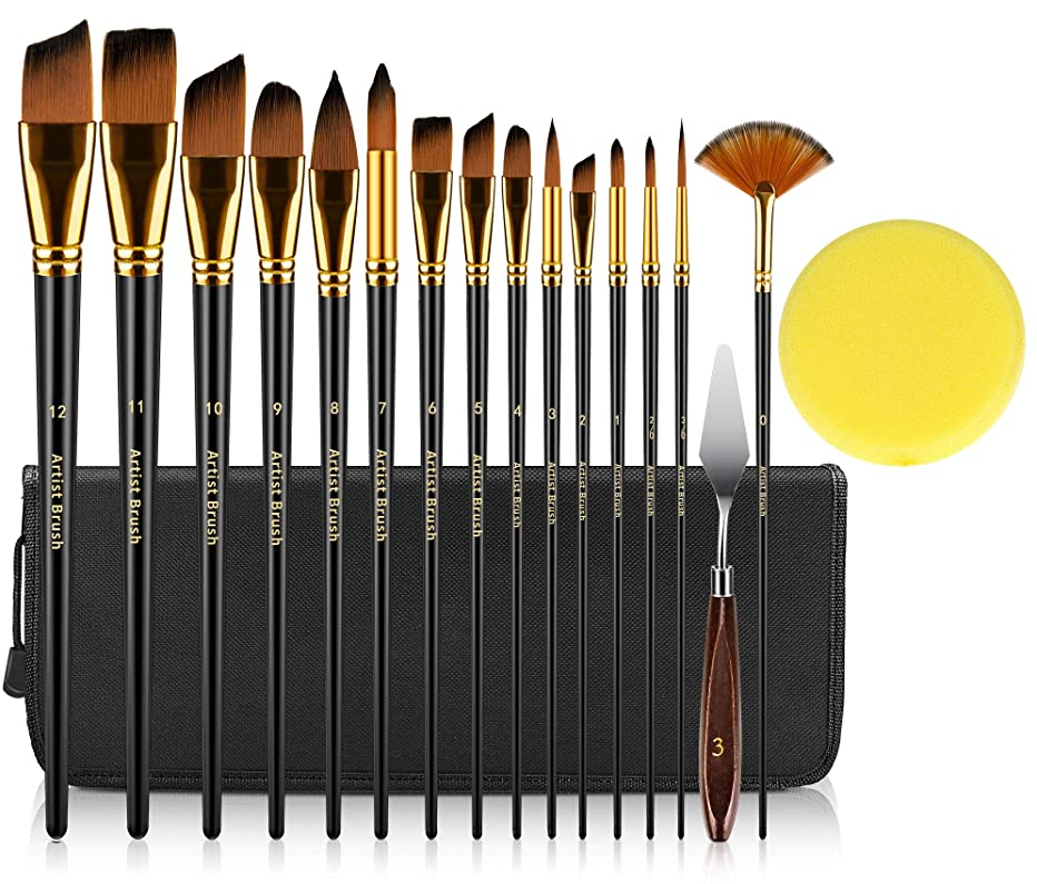 INTSUN 15 Acrylic Paint Brush Set, Oil Paint Brushes Watercolor Paintbrushes with Protective Carry Case, Knife & Sponge for Artist Beginner