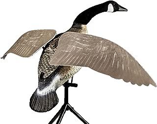 Lucky Duck - Goose Decoys