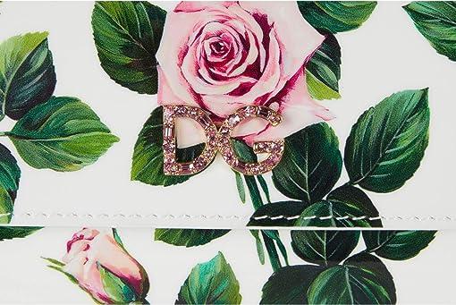 Rose Rosa Fdo.Panna