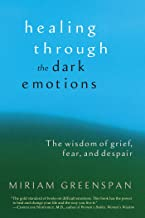 Healing through the Dark Emotions: The Wisdom of Grief, Fear, and Despair (English Edition)