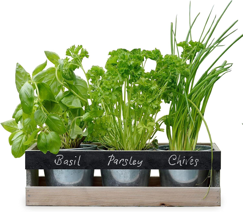 Indoor Herb Garden Kit   by Viridescent   Wooden Windowsill ...