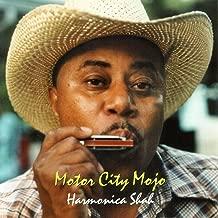 Best motor city guitar used Reviews