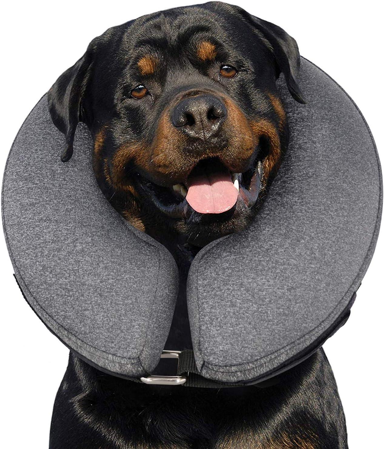 81n0ooDVguL. AC SL1500 Inflatable Dog Collar Reviews