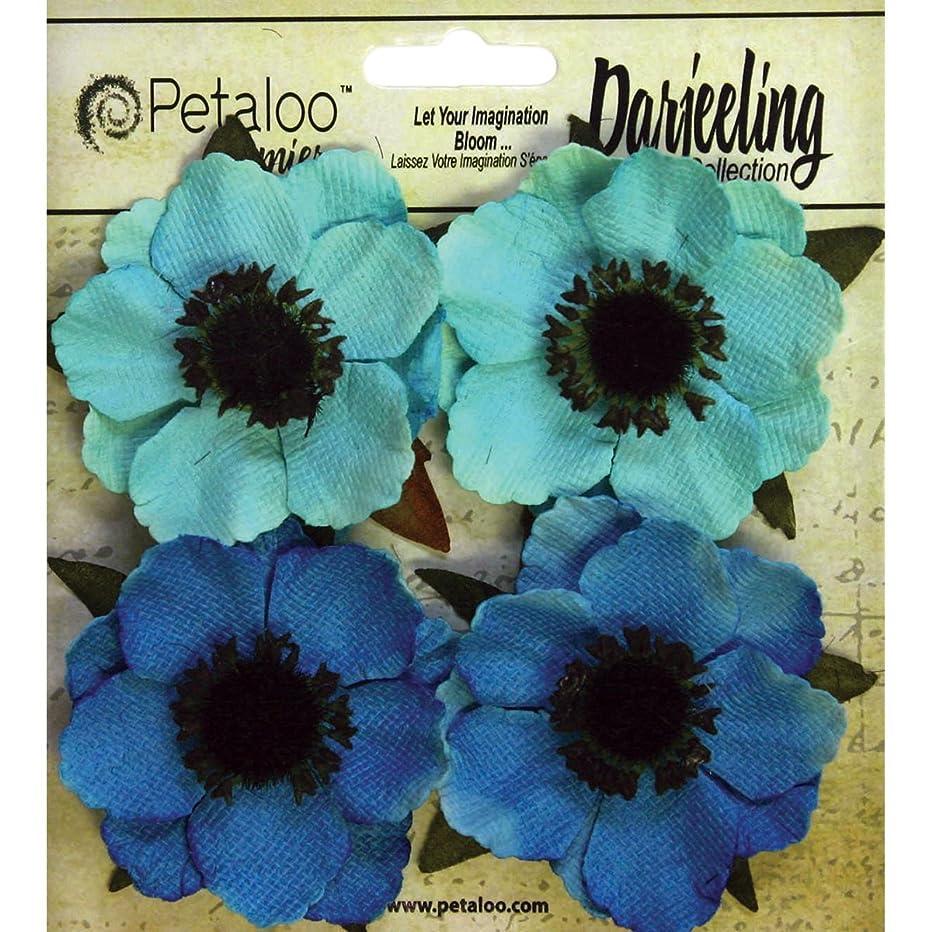Darjeeling Anemone Flowers 2
