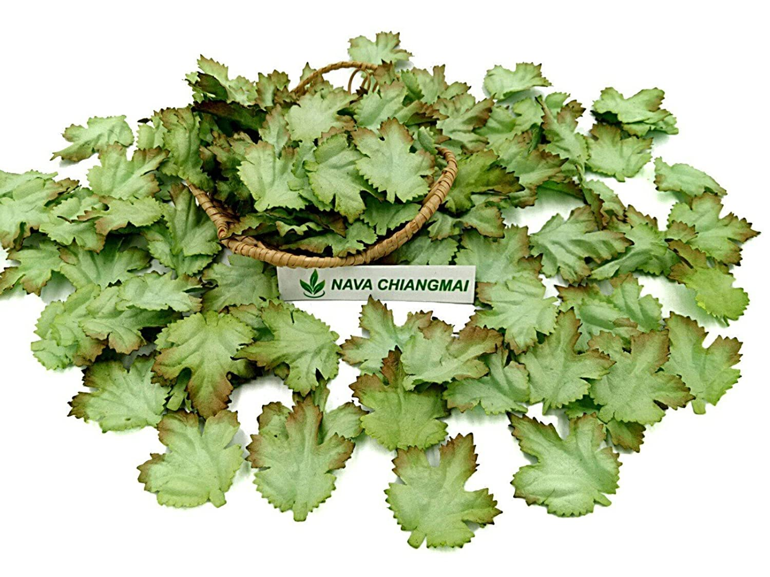 NAVA CHIANGMAI 100 pcs Mulberry Paper Maple Leaves Artificial Leaves Craft Leaves for Scrapbooking Wedding Doll House Supplies Card (Green Tone)