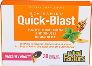 Natural Factors - Echinamide Quick-Blast, Soothe Your Throat & Sinuses, Honey Lemon, 30 Liquid-Gel Soft Chews