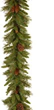 National Tree 9 Foot by 10 Inch Pine Cone Garland (PC-9G-1)