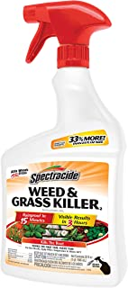 Spectracide HG-96428 Weed & Grass Killer Ready-to-Use, 32-fl oz