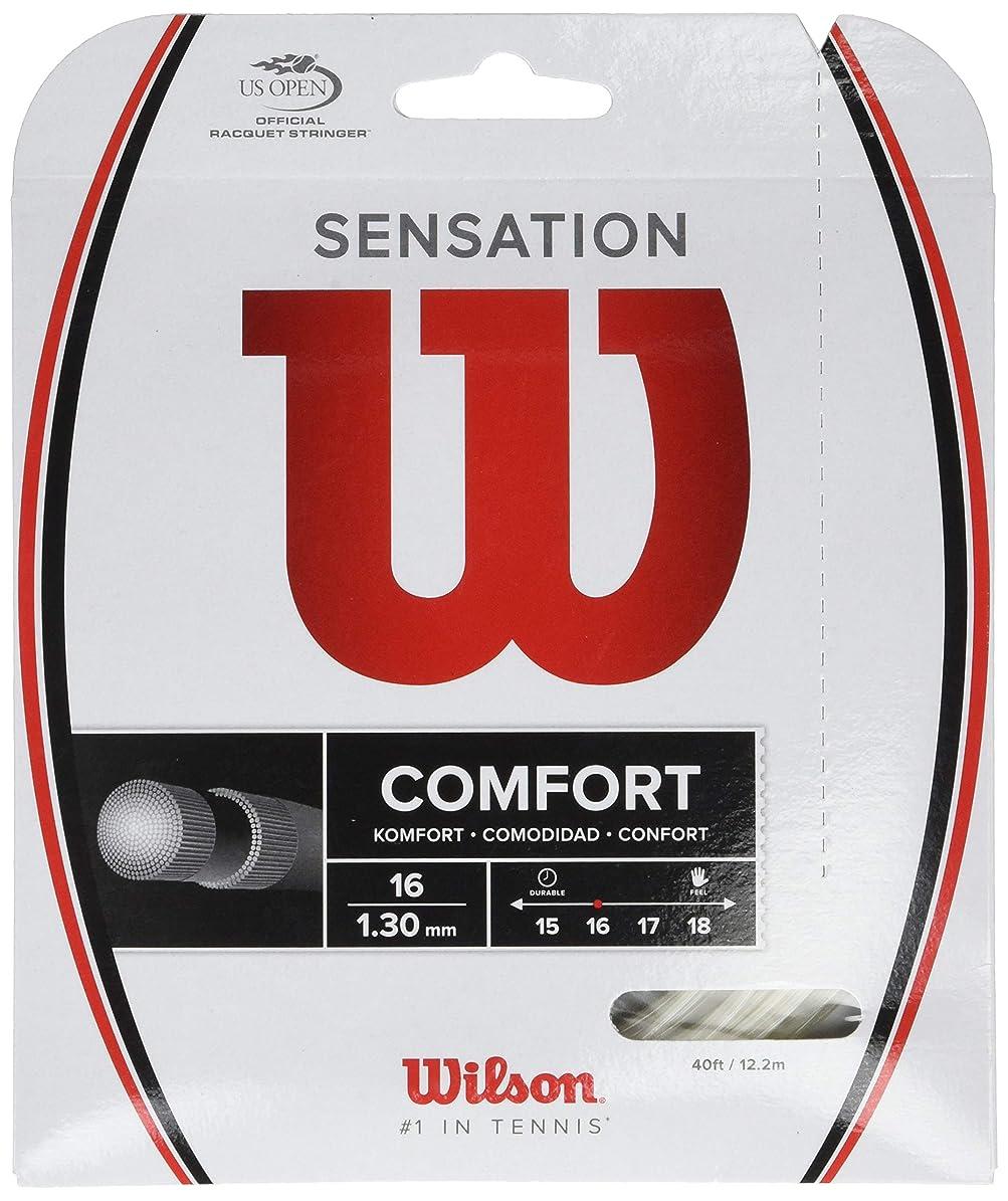 フィード後退する微弱ウイルソン(ウイルソン) 硬式テニスストリング センセーション 16 WRZ941000