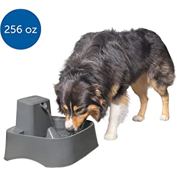 PetSafe Drinkwell 2 Gallon and Big Dog Pet Fountains - Automatic Dog and Cat Water Fountain - Best for Medium to Large Breeds and Multiple Pets