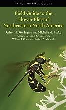 Best the beetles of northeastern north america Reviews