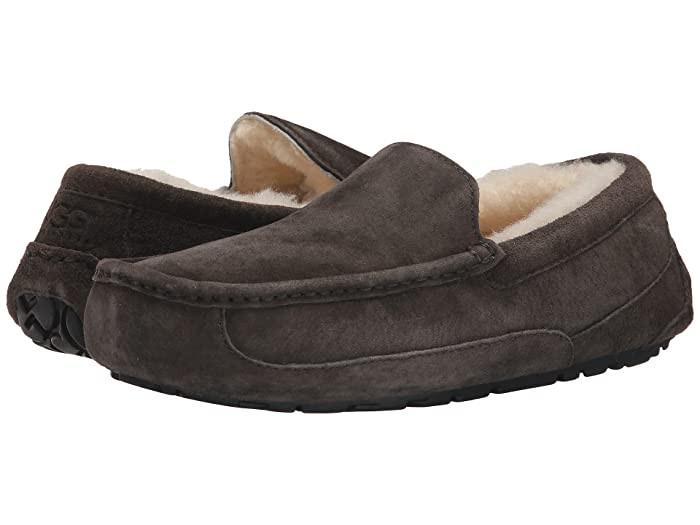 UGG  Ascot - WIDE (Charcoal) Mens Slippers