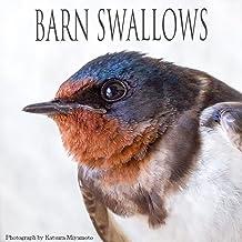 表紙: BARN SWALLOWS | 宮本 桂