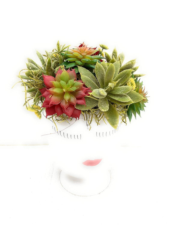 Succulents in Super intense SALE discount white ceramic vase