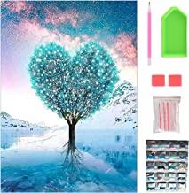 40 * 30CM 5D Diamond Painting Kits Full Drill, DIY Diamond Art Kits Adults, Painting by Numbers for Kids, Crystal Art for ...