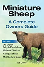 Miniature Sheep. A Complete Owners Guide.: Old English Babydoll Southdowns, Miniature Cheviots, Harlequin Sheep, Mini Shetland Sheep