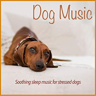 Dog Music: Soothing Sleep Music for Stressed Dogs