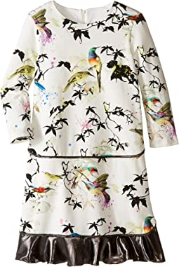 Roberto Cavalli Kids - Bird Print Dress w/ Contrast Ruffle Hem (Big Kids)