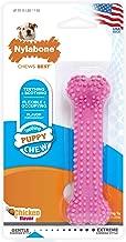 Nylabone Puppy Chew Toy, Petite