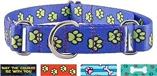 Best dog collars for sale ebay Reviews