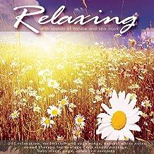 Best garden of peace song Reviews