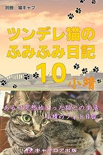 ツンデレ猫のふみふみ日記10
