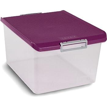 TATAY 1150020 - Caja de Almacenamiento Multiusos con Tapa, 35 l de Capacidad, Plástico Polipropileno Libre de BPA, Transparente con Tapa Morada, 37,7 x 47,5 x 26 cm: Amazon.es: Hogar
