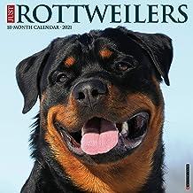 Just Rottweilers 2021 Wall Calendar (Dog Breed Calendar)