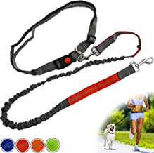 Zenify Hands Free Dog Lead for Running, Walking, Hiking, Canicross Dual Handle Comfortable Waist Belt Leash Band Reflective Stitching Adjustable Bungee Length Extendable 125cm - 190cm (Grey/Red)
