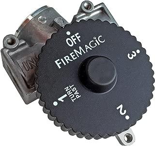 timer gas shut off valve