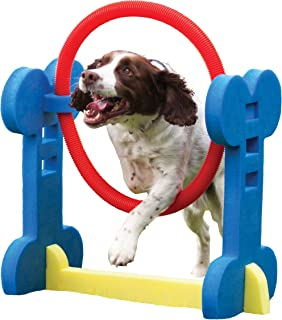 Agility Hoop - Dog play & exercise toy