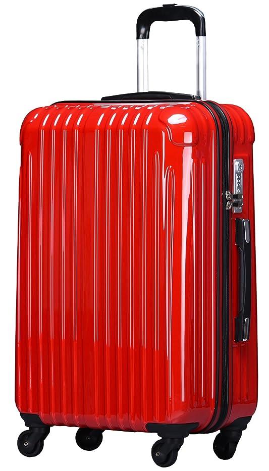 ビートポーズ悲しむラッキーパンダ スーツケース TY001 ハード 超軽量 TSAロック ファスナータイプ 機内持込