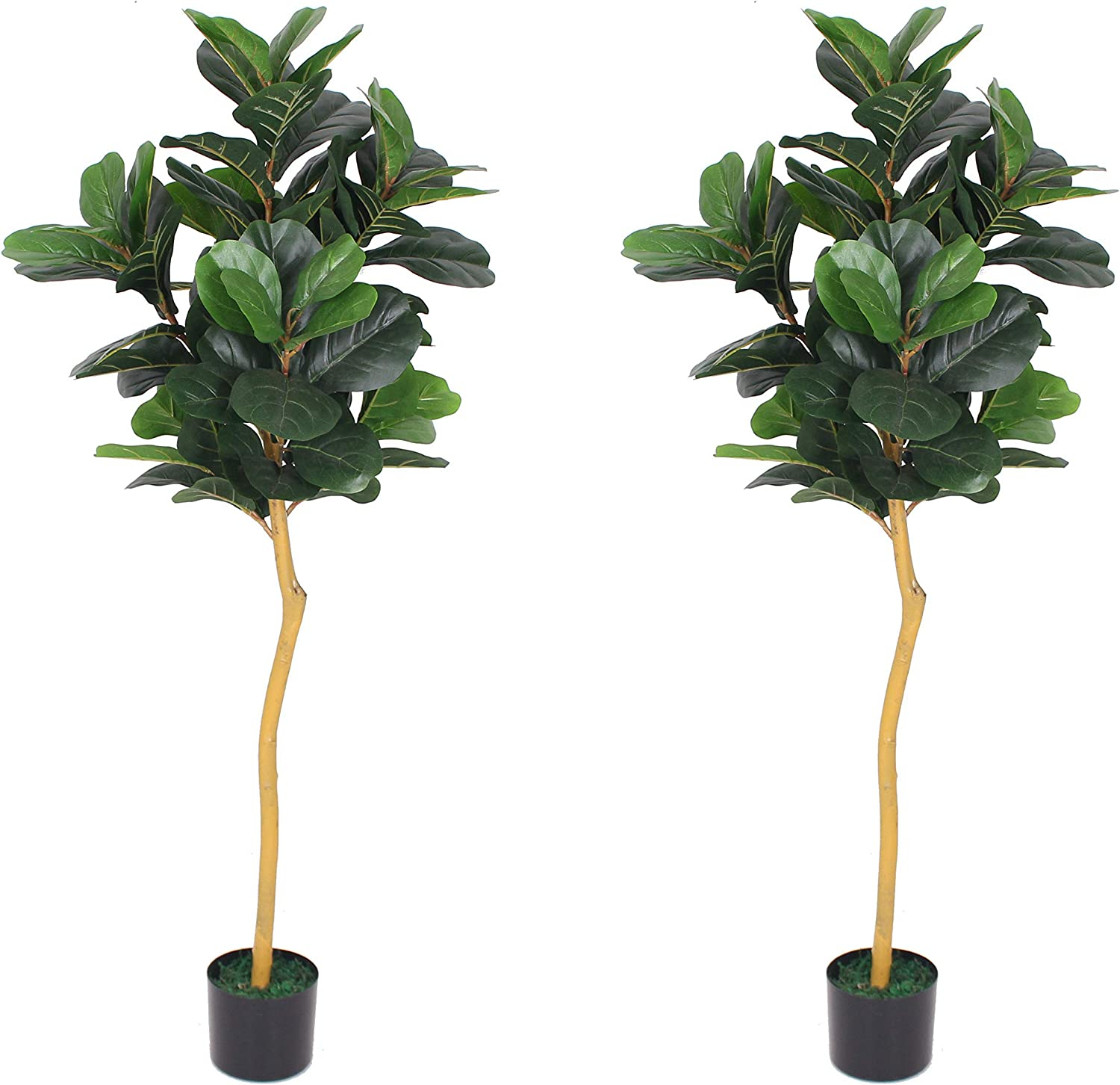 AMERIQUE Pair Gorgeous Max 86% OFF 5 Feet Each Leaf Tree Limited Special Price Artifici Fig Fiddle