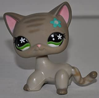 Shorthair #483 (Green Eyes, Brown Paws, Brown Stripes on Tail/head, Blue Flower On Head) Littlest Pet Shop (Retired) Collector Toy - LPS Collectible Replacement Single Figure - Loose (OOP Out of Package & Print)