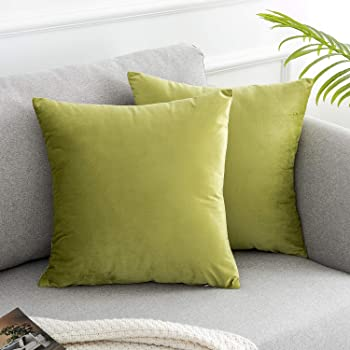 "WLNUI Sage Green 2packs-18inches Throw Pillow Covers, 2 Packs,18""x18"""