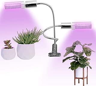 Best indoor flower bulb Reviews
