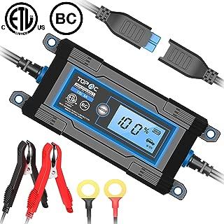 Best 24 volt car battery charger Reviews