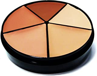 Pure Ziva 5 Shade Medium to Full Solid Matte Buildable Coverage Concealer Palette Wheel Contouring Kit, Paraben & Gluten Free, No Animal Testing & Cruelty Free